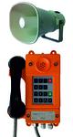 Общепромышленный телефон ТАШ-21ПА-IP-С